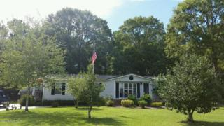 1546 E Northwind Drive SW, Ocean Isle Beach, NC 28469 (MLS #100060042) :: Century 21 Sweyer & Associates