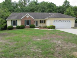 136 Raintree Circle, Jacksonville, NC 28540 (MLS #100060149) :: Century 21 Sweyer & Associates