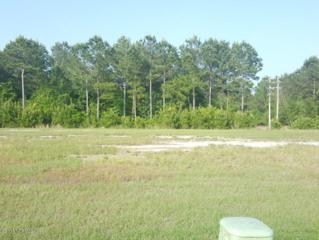 523 Moss Lake Lane, Holly Ridge, NC 28445 (MLS #100060187) :: Century 21 Sweyer & Associates