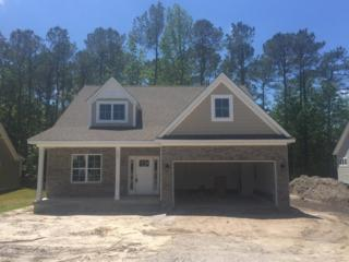 129 Windy Point, Sneads Ferry, NC 28460 (MLS #100062343) :: Courtney Carter Homes