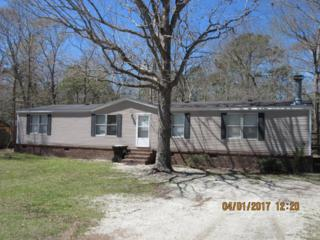 156 Lake Haven Drive, Sneads Ferry, NC 28460 (MLS #100063884) :: Courtney Carter Homes