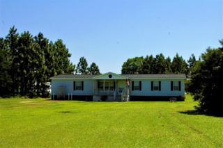 1628 Belgrade Swansboro Road, Maysville, NC 28555 (MLS #100063951) :: Courtney Carter Homes