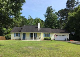 117 Pond Drive, Newport, NC 28570 (MLS #100065172) :: The Pistol Tingen Team- Berkshire Hathaway HomeServices Prime Properties