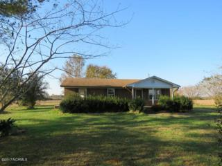 7850 Willard Road, Willard, NC 28478 (MLS #100065174) :: The Pistol Tingen Team- Berkshire Hathaway HomeServices Prime Properties