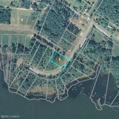 200 Leeward Lane, Beaufort, NC 28516 (MLS #10903952) :: Century 21 Sweyer & Associates