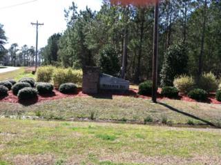 300 Garbacon, Beaufort, NC 28516 (MLS #11201396) :: Century 21 Sweyer & Associates