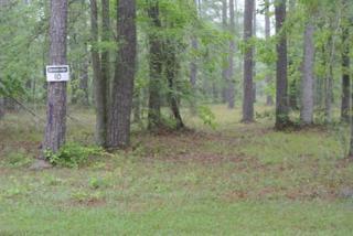 145 Martin Creek Drive, Beaufort, NC 28516 (MLS #11302322) :: Century 21 Sweyer & Associates