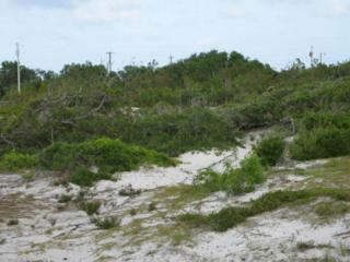 110 Sandy Landing Road, Cedar Island, NC 28520 (MLS #11501292) :: Century 21 Sweyer & Associates