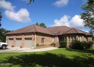 119 Rowe Court, Beaufort, NC 28516 (MLS #11503515) :: Century 21 Sweyer & Associates