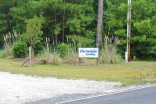 100 Periwinkle Court, Beaufort, NC 28516 (MLS #11503747) :: Century 21 Sweyer & Associates