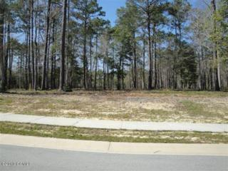 404 Salt Creek Road, Swansboro, NC 28584 (MLS #11505291) :: Century 21 Sweyer & Associates