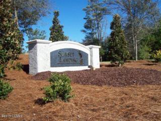 424 Sunrise Court, Emerald Isle, NC 28594 (MLS #11505421) :: Century 21 Sweyer & Associates