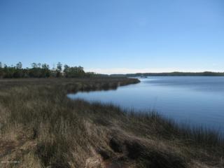 849 Osprey Point Road, Beaufort, NC 28516 (MLS #11505428) :: Century 21 Sweyer & Associates