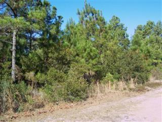 4650 Clearview Drive SE, Southport, NC 28461 (MLS #20681164) :: Century 21 Sweyer & Associates