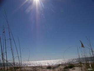 702 Shoals Watch Way, Bald Head Island, NC 28461 (MLS #20682052) :: Century 21 Sweyer & Associates