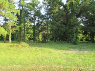 2201 Lakeside Avenue SW, Supply, NC 28462 (MLS #20694291) :: Century 21 Sweyer & Associates