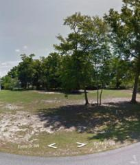 1593 Eyota Drive SW, Ocean Isle Beach, NC 28469 (MLS #20696824) :: Century 21 Sweyer & Associates