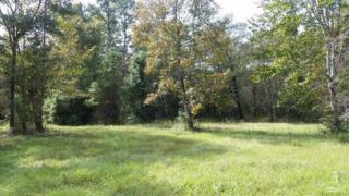 645 Stone Ridge Road SW, Supply, NC 28462 (MLS #20697576) :: Century 21 Sweyer & Associates