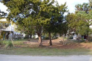 121 Sea Gull Drive, Holden Beach, NC 28462 (MLS #20698361) :: Century 21 Sweyer & Associates