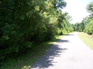 3 Meeks Creek Drive, Rocky Point, NC 28457 (MLS #30494108) :: Century 21 Sweyer & Associates