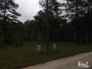 Lot 41 Hwy 53 Road, Burgaw, NC 28425 (MLS #30521710) :: Century 21 Sweyer & Associates