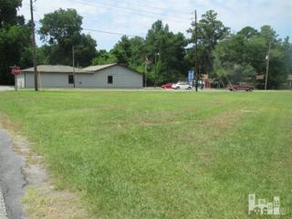 4023 Holly Shelter Road, Castle Hayne, NC 28429 (MLS #30525291) :: Century 21 Sweyer & Associates