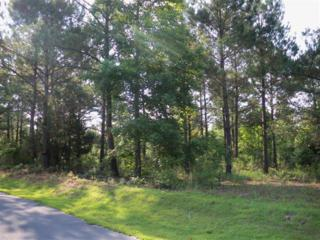Lt 6 Holly Hill Road, Hampstead, NC 28443 (MLS #40203671) :: Century 21 Sweyer & Associates