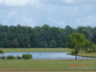 0 Midlake Court, Grimesland, NC 27837 (MLS #50105841) :: Century 21 Sweyer & Associates
