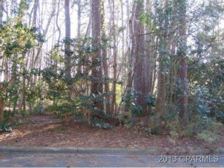 0 Ironwood Drive, Greenville, NC 27834 (MLS #50107727) :: Century 21 Sweyer & Associates