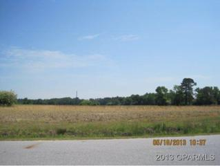 3053 Foxhall Drive, Farmville, NC 27828 (MLS #50109399) :: Century 21 Sweyer & Associates