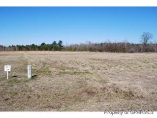 0 Sandalwood Drive, Grifton, NC 28530 (MLS #50117859) :: Century 21 Sweyer & Associates