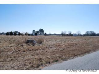 273 Sandalwood Drive, Grifton, NC 28530 (MLS #50117864) :: Century 21 Sweyer & Associates