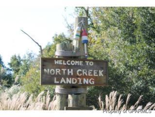 20 North Creek Drive N, Belhaven, NC 27810 (MLS #50118525) :: Century 21 Sweyer & Associates