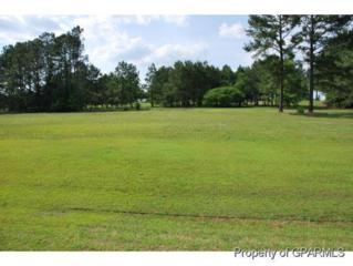 23 Mill Pond Road SE, Deep Run, NC 28525 (MLS #50120235) :: Century 21 Sweyer & Associates