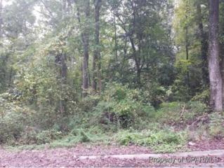 Lot 4 Robinwood Drive, Kinston, NC 28504 (MLS #50121920) :: Century 21 Sweyer & Associates