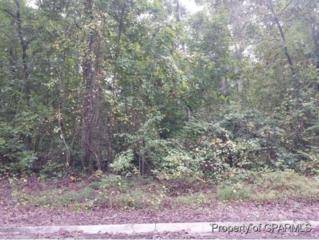 Lot 5 Robinwood Drive, Kinston, NC 28504 (MLS #50121921) :: Century 21 Sweyer & Associates