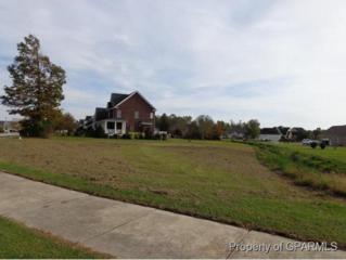 1212 Trafalgar Drive, Winterville, NC 28590 (MLS #50122228) :: Century 21 Sweyer & Associates