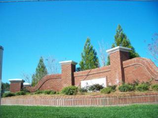 7332 Stalbridge Road, Sims, NC 27880 (MLS #60047276) :: Century 21 Sweyer & Associates
