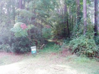 37 Mill Creek Lane, Bath, NC 27808 (MLS #70028364) :: Century 21 Sweyer & Associates