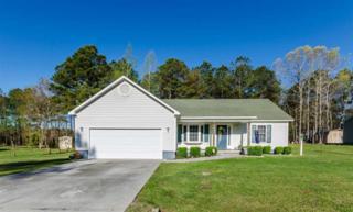 134 Live Oak Drive, Jacksonville, NC 28540 (MLS #80163869) :: Century 21 Sweyer & Associates