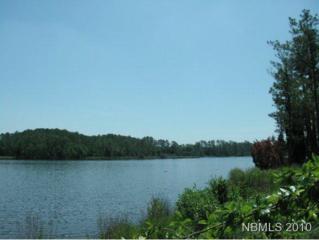 269 Shell Castle Road, Vandemere, NC 28587 (MLS #90077605) :: Century 21 Sweyer & Associates