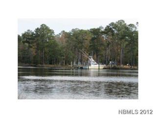 122 Headwaters Drive, Oriental, NC 28571 (MLS #90087665) :: Century 21 Sweyer & Associates