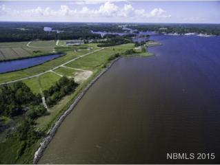 229 Wind Lake Road, Oriental, NC 28571 (MLS #90094830) :: Century 21 Sweyer & Associates
