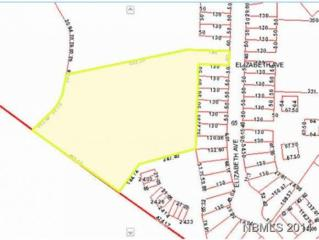 Tbd Elizabeth Downs Tract, New Bern, NC 28562 (MLS #90095203) :: Century 21 Sweyer & Associates