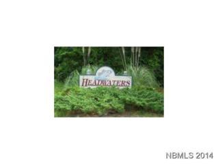 171 Headwaters Drive, Oriental, NC 28571 (MLS #90095819) :: Century 21 Sweyer & Associates