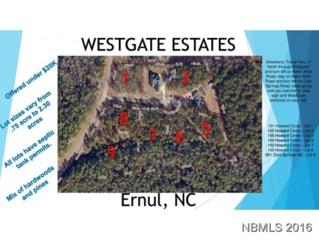 100 Howard Circle, Ernul, NC 28527 (MLS #90099413) :: Century 21 Sweyer & Associates