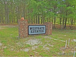 651 Cool Springs Road, Ernul, NC 28527 (MLS #90099414) :: Century 21 Sweyer & Associates