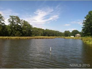 263 Morris Creek Lane, Oriental, NC 28571 (MLS #90100485) :: Century 21 Sweyer & Associates