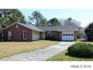 513 Gene Drive, Havelock, NC 28532 (MLS #90102963) :: Century 21 Sweyer & Associates