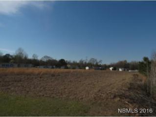 111 Theodore Lane, New Bern, NC 28560 (MLS #90103131) :: Century 21 Sweyer & Associates